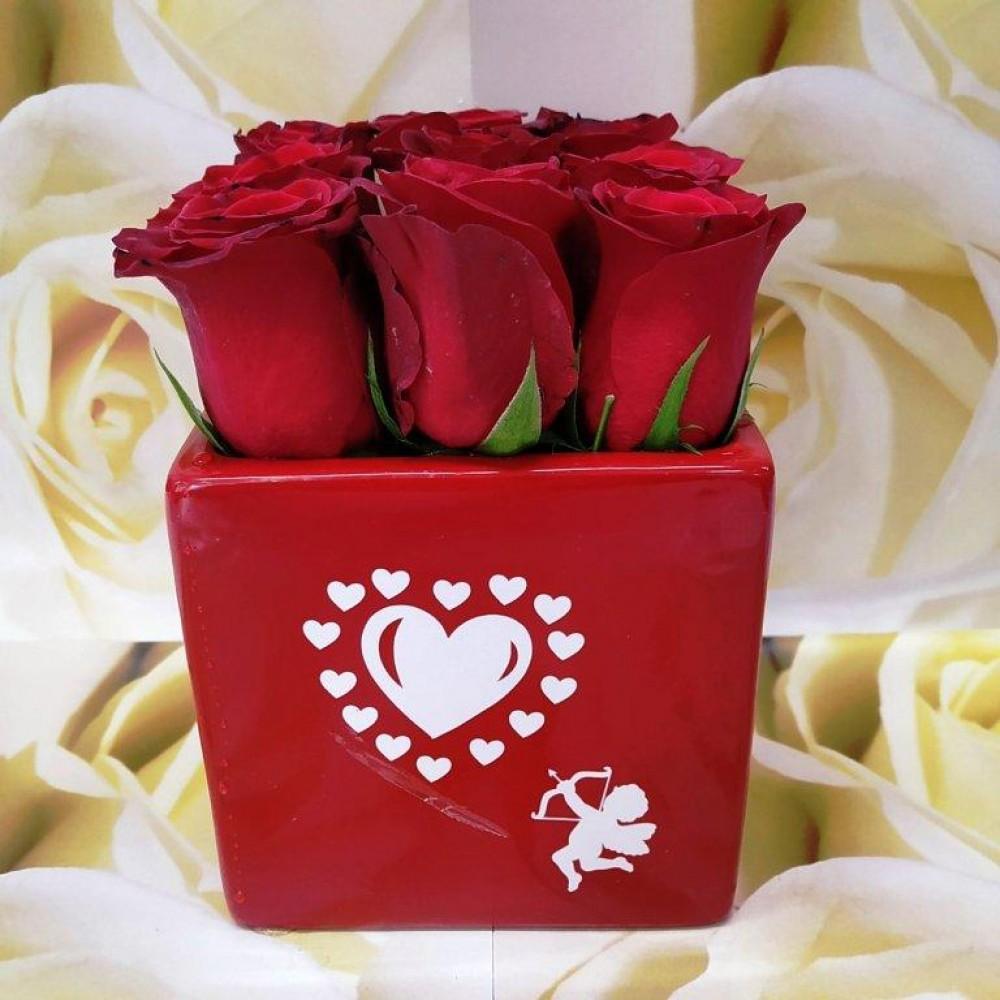 Κόκκινα Τριαντάφυλλα Βαλεντίνος