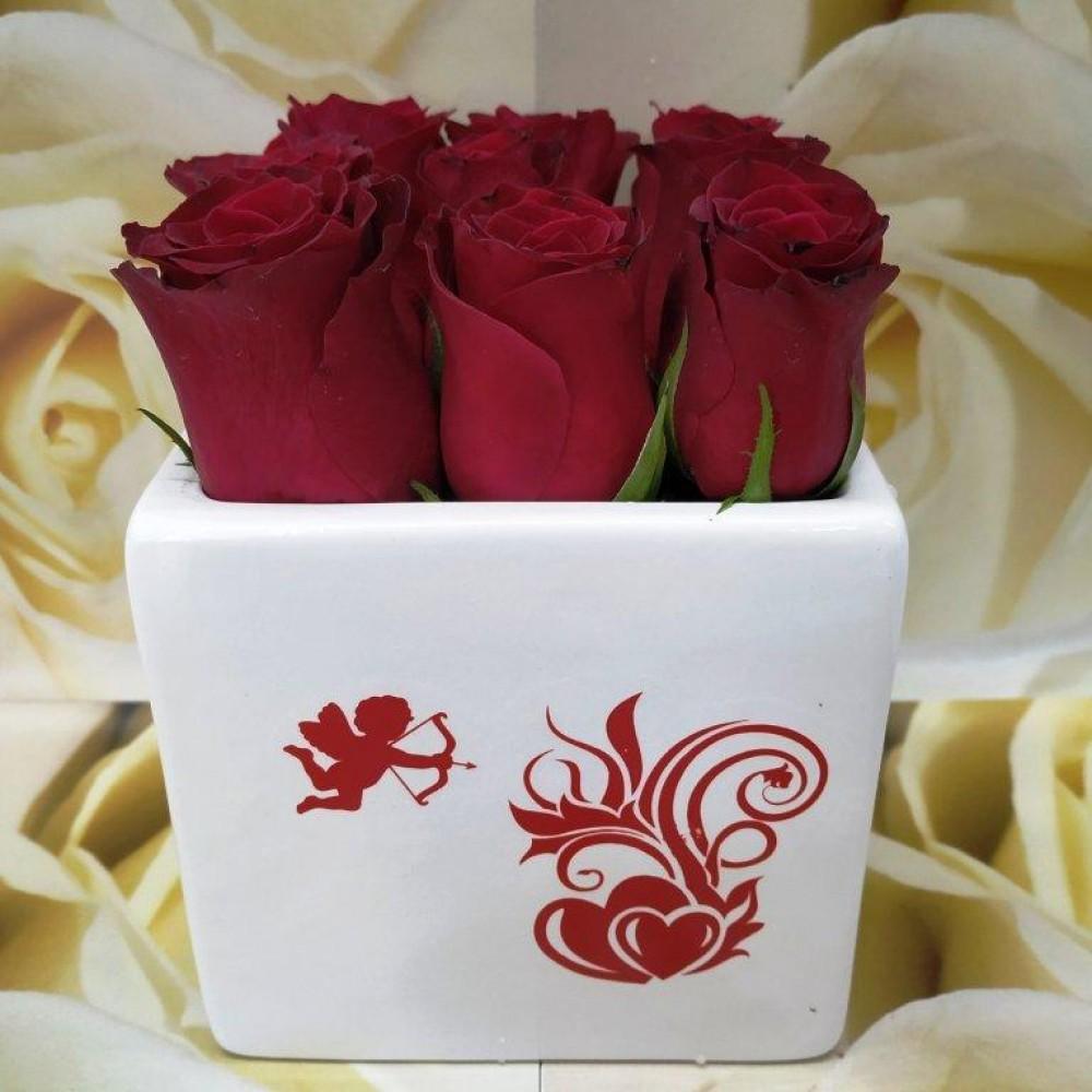 Κόκκινα Τριαντάφυλλα Λευκό κεραμικό