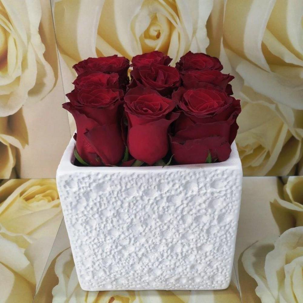 Κόκκινα τριαντάφυλλα σε κεραμικό