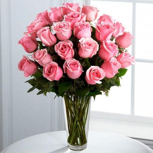 Τριαντάφυλλα Λευκά Equador